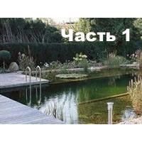 Как создать плавательный пруд? Общие сведения