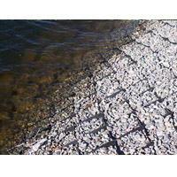Укрепление берега водоемов георешеткой, геотекстилем