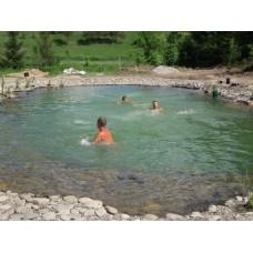 Создание искусственных плавательных прудов