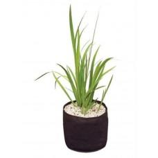 Корзина для растений в пруду Velda Plant Basket 25x20 Круглая