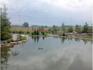 Декоративное озеро для плавания с изливом с. Процев