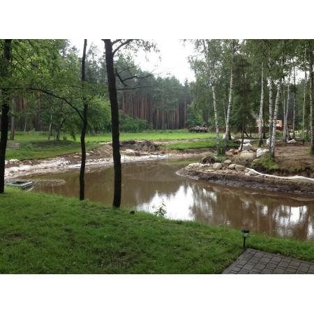 Восстановление, биологическая реанимация прудов