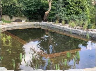 Водный ландшафт с каскадным ручьем, водопадами и плавательным экопрудом г. Львов