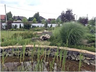 Создание ландшафта, озеленение участка вокруг плавательного эководоема г. Кривой Рог